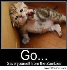 Funny Animal Quotes For Kids