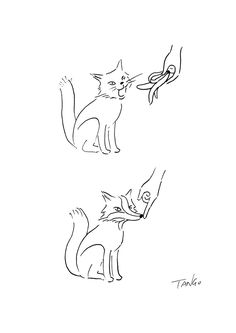 1000 Drawings ! — Cat and Fox by  Tango Gao