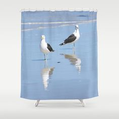 The Blues Seagull Pair Shower Curtain by crismanart Blue Shower Curtains, Blues, Prints