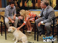 Bradley Cooper's Dog on Live With Kelly: Video : People.com    The man is good looking, cooks, and loves dogs, it does not get better than that.