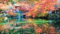 Daigo-ji is a Shingon Buddhist temple in Fushimi-ku Kyoto Japan[852480]