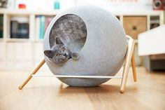 Cat furniture by Meyou has launched first collection with three designer cat beds. The Ball, The Cube and The Bed manufactured from natural ingredients Modern Cat Furniture, Pet Furniture, Rustic Furniture, Furniture Design, Furniture Movers, French Furniture, Furniture Outlet, Cheap Furniture, Discount Furniture