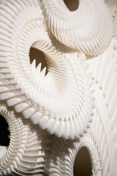 Iris van Herpen Winter 2013  3D vormen 3D printen Organische ontwerpen Vreemde materialen