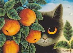 'Cat & Oranges' - Anna Hollerer                              …