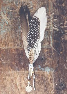 Beautiful gathered feathers, wrapped in leather & adorned with an antique coin. The perfect bohemian home accent!
