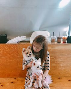 Yuehua Entertainment, Starship Entertainment, Xuan Yi, Cosmic Girls, Extended Play, Girl Group, Husky, Corgi, Cute