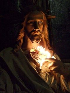 Heart of Jesus, source of all consolation, have mercy on us.