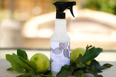 little monster: make your own Lemon All Purpose Cleaner using castile soap, lemons essential oil, tea tree oil and water.