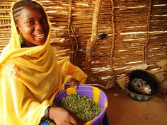 West African Food Crisis 2012: Niger by Caritas Internationalis, via Flickr