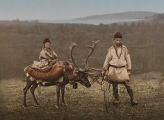 Reindeer Riders... historically semi-nomadic people in several parts of the world have domesticated reindeer as saddle animals, pack animals, and work animals. In Mongolia, Siberia, Northern Europe, these people have lived closely with their reindeer herds for countless generations, even hunting wild reindeer from the backs of their domesticated kin.