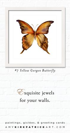 #7 YELLOW GORGON BUTTERFLY, Butterfly Watercolor Art, Butterfly Prints & Greeting Cards • 100 Butterfly choices • AmyKirkpatrickArt.com