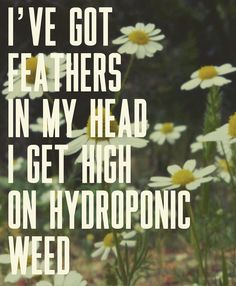 Lana Del Rey - Brooklyn Baby _ I've got feathers in my hair. I get high on hydroponic weed.