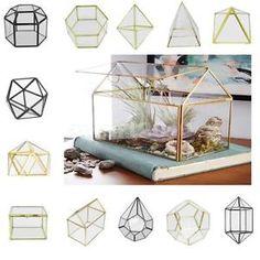Irregular Glass Geometric Succulent Planter Vase Box Terrarium Container for Home Decoration Gift. Subcategory: Home Decor. Terrarium Containers, Terrarium Diy, Glass Terrarium, Container Plants, Glass Bookcase, Cheap Vases, Glass Cube, Clear Glass, Terraria