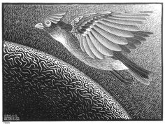 M. C. Escher. The 1st Day of the Creation, 1925 코리아바카라 에이플러스바카라 ┿∥▶ http://long17.com/◀∥┿ 다모아바카라  코리아바카라 에이플러스바카라 다모아바카라 코리아바카라 에이플러스바카라 다모아바카라 코리아바카라 에이플러스바카라 다모아바카라