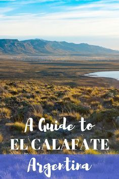 If you're exploring the southern Patagonia region in Argentina, you'll go through El Calafate at some point. Here's a guide to El Calafate to help you plan your trip there!