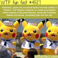 WTF Fun Facts is updated daily with interesting & funny random facts. We post about health, celebs/people, places, animals, history information and much more. New facts all day - every day! Wtf Fun Facts, True Facts, Funny Facts, Random Facts, Awesome Facts, Crazy Facts, Interesting Facts, Japan Facts, What The Fact