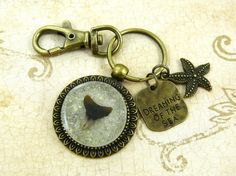 Fossil Shark Tooth Keychain / Purse Charm / Zipper Pull Jewelry with Beach Sand and Seashell from Sanibel Florida