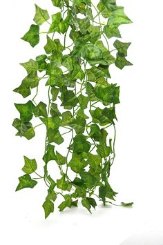 Antspirit 76feet-12 English Ivy Silk Greenery Wedding Garlands Party Decorations ** Learn more by visiting the image link.