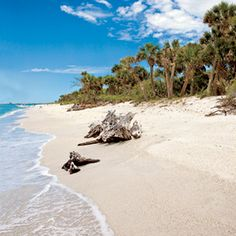 5 Secret Islands in Florida