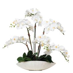 Our faux white Phalenopsis looks incredible in our low white oval bowl. A generous amount of greenery balances out the pale flowers and vase. Fresh and classic, this makes a perfect centerpiece or entry way accessory. Orchid Flower Arrangements, Orchid Planters, Artificial Floral Arrangements, Orchid Centerpieces, Artificial Orchids, Faux Flowers, Silk Flowers, Beautiful Flowers, Dendrobium Orchids