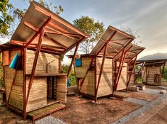 3. Butterfly Bamboo Homes: Rumah kupu-kupu