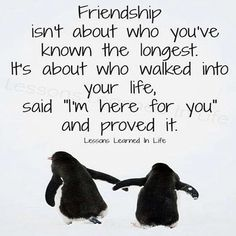 """Friendship isn't about who you've known the longest. It's about who walked into your life, said, """"I'm here for you"""" and proved it."""