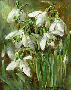 Buy the beautiful flower paintings, Flower Cards and Prints of Anne Cotterill - published by Mill House Fine Art Publishing Ltd Art Floral, White Flowers, Beautiful Flowers, First Flowers Of Spring, Image Halloween, Image Nature, Wow Art, Learn To Paint, Beautiful Paintings