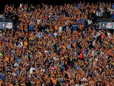 hull city 2013 wembley crowd - Google Search Hull City, City Photo, Christmas Tree, Holiday Decor, Tigers, Crowd, Fans, Football, Club