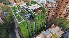 O maior jardim vertical do mundo no coração de Bogotá tem 85.000 plantas