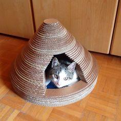 Kartondan Kedi Evi Nasıl Yapılır ?
