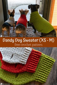 Dandy Dog Sweater: Easy Crochet Dog Sweater Pattern This dog sweater pattern comes in three sizes that will fit tiny dogs to medium size dogs! Whip up a sweater for your pup using this free crochet pattern. Small Dog Sweaters, Cat Sweaters, Crochet Sweaters, Sweater Coats, Crochet Dog Patterns, Knitting Patterns, Crochet Dog Sweater Free Pattern, Sewing Patterns, Knitting Projects