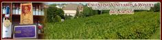 Valentino Vineyards & Winery produces over 20 different types of wine starting at $ 14 per bottle.