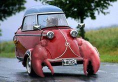lobster car #JoesCrabShack.......... Salvador Dali would have loved this vehicle.