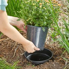 Super-Simple Landscaping Hack: Plant Your Pots - Garden Design Ideas 2019 Landscaping Tools, Backyard Landscaping, Hydrangea Landscaping, Landscaping Software, Garden Care, Compost, The Family Handyman, Amazing Life Hacks, Lawn Edging