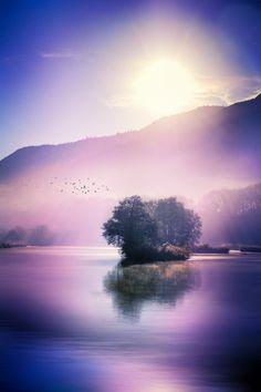 ~~November Morning • Geneva, Switzerland • by KarinaFleur~~