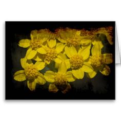 Grungy Yellow Wildflowers Valentine's Card from Florals by Fred #zazzle #gift