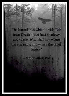 Edgar Allan Poe Edgar Allen Poe, Edgar Allan, Love Words, Beautiful Words, Poe Quotes, Dark Poetry, Literature Quotes, Gothic Aesthetic, Losing A Loved One