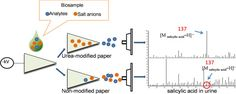 #Talanta: New urea-modified paper substrate for enhanced analytical performance of negative ion mode paper spray mass spectrometry