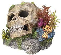 absolut ungiftig, das biologische Gleichgewicht wird nicht beeinträchtigt ohne Diffusor und ohne Membranpumpenanschluss robuste Farbe Nobby, Aquarium Ornaments, Synthetic Resin, Planted Aquarium, Fresh Water, Color Change, Neutral, Lion Sculpture, Skull