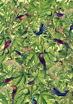 We Are Handsome flora & fauna print love love!