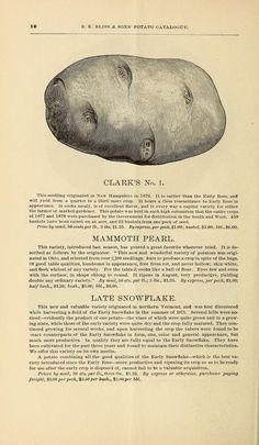 1882 - Illustrated and descriptive catalogue of potatoes for seed / - Biodiversity Heritage Library