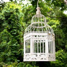 ❥ birdcage