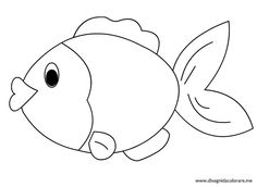 Sagome Di Animali Marini Inseriamo I Disegni Del Pesce Tropicale