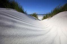#Duinen op de Eilanden in het #Waddengebied.