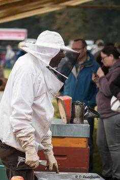 Explications d'un apiculteur