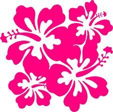 Αποτέλεσμα εικόνας για hawaiian themes