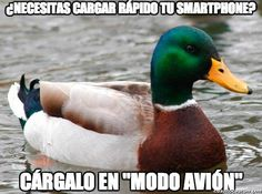 actual advice mallard meme 6 Great nuggets of wisdom from the Actual Advice Mallard Photos) Good Things, Crazy Things, Strange Things, Things Happen, Creative Things, Amazing Things, Creative Ideas, Gold Mine, Funny Stuff