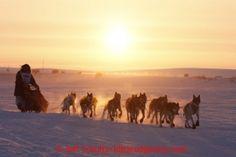 Finish Line Duels – Iditarod