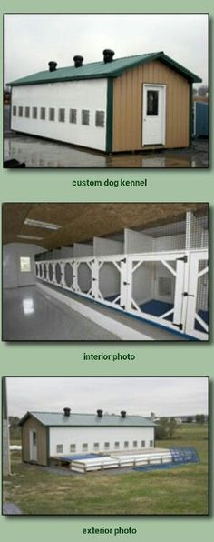 Dog+Birth+Certificate+Template Projects to Try Pinterest Dog - new dog training certificate template