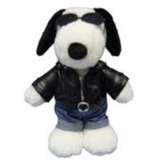 Snoopy doll & clothing
